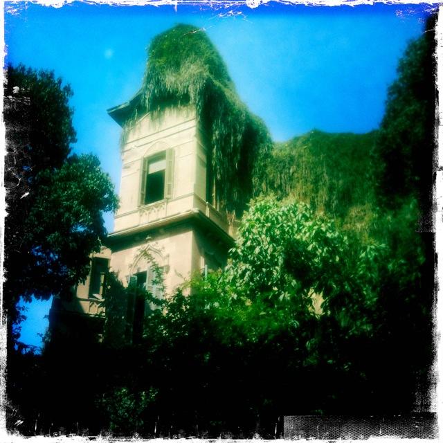 Moss covered run down old villa. So sad. Still beautiful.
