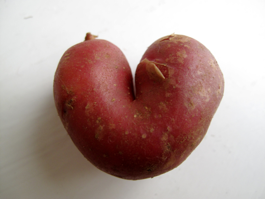 I outsourced the search for this post's image to my boyfriend. He found me this picture of a potato. He is a true romantic.