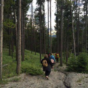art walk, sketching, nature, creative pathway, banff